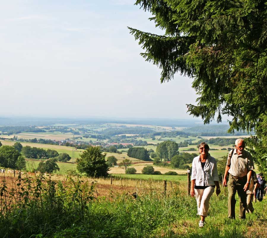 Wandern im Vogelsberg