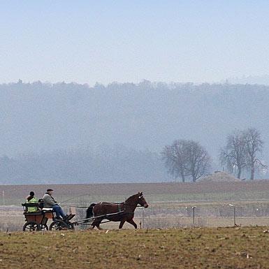 Unterwegs mit der Pferdekutsche
